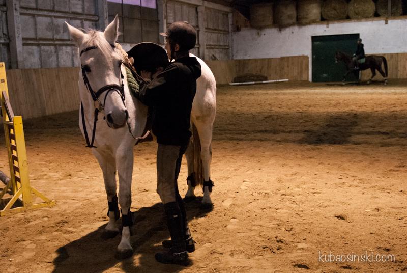 konie0033