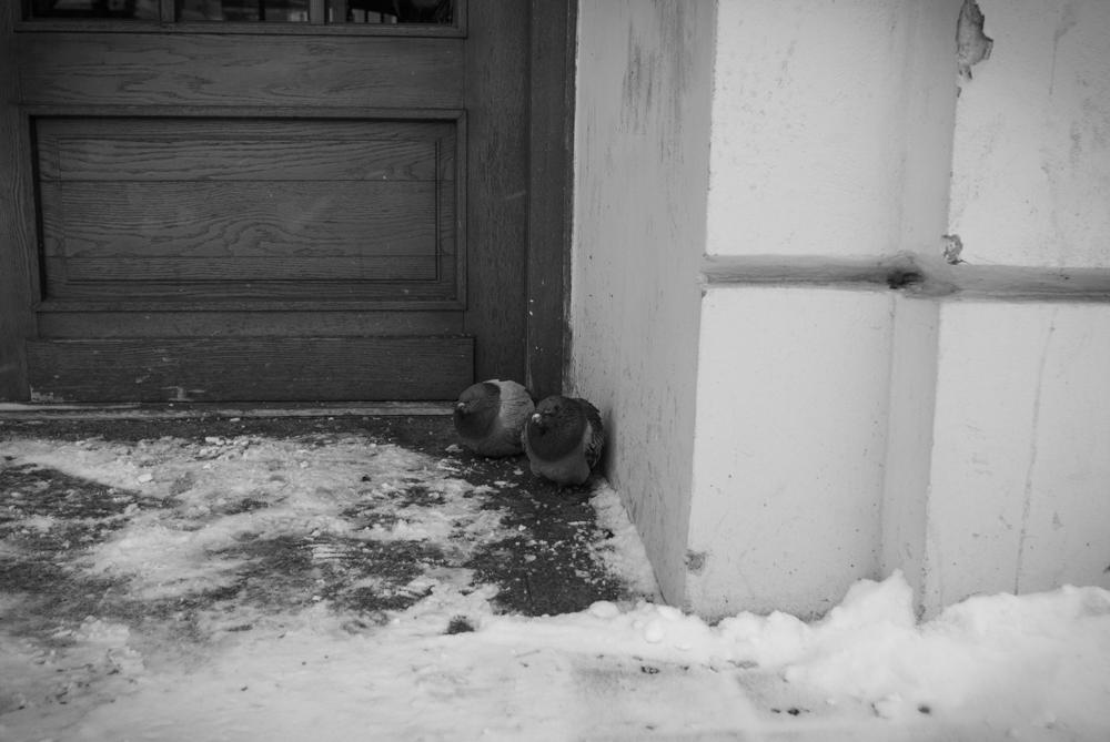 Lublin0002